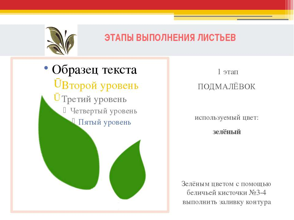 ЭТАПЫ ВЫПОЛНЕНИЯ ЛИСТЬЕВ 1 этап ПОДМАЛЁВОК используемый цвет: зелёный Зелёным...
