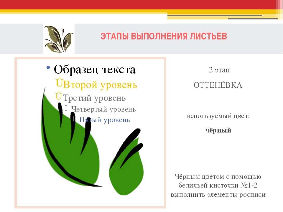 ЭТАПЫ ВЫПОЛНЕНИЯ ЛИСТЬЕВ 2 этап ОТТЕНЁВКА используемый цвет: чёрный Чёрным цв...