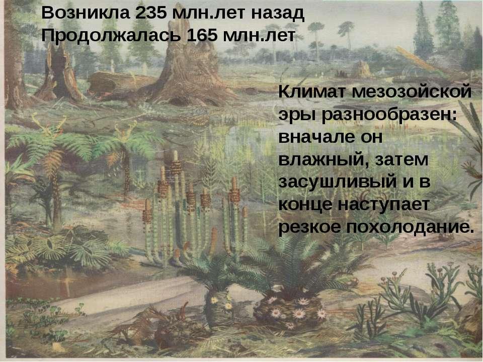 Возникла 235 млн.лет назад Продолжалась 165 млн.лет Климат мезозойской эры ра...