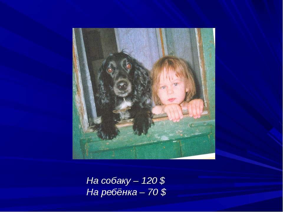 На собаку – 120 $ На ребёнка – 70 $