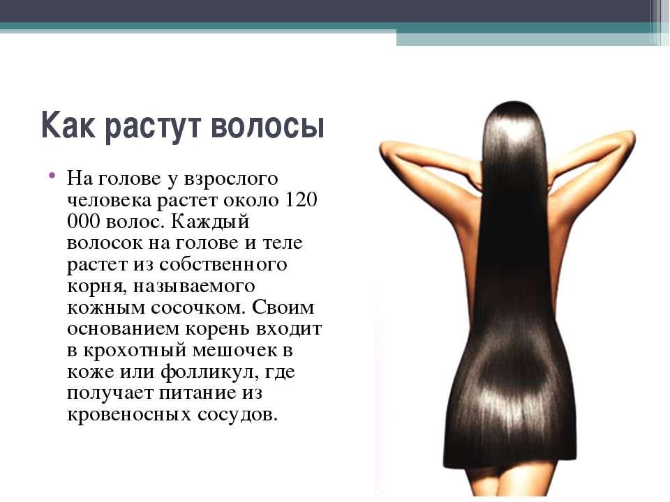 Как растут волосы На голове у взрослого человека растет около 120 000 волос. ...