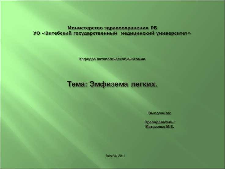 Витебск 2011