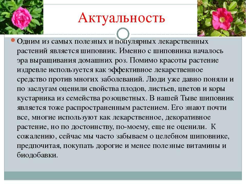Актуальность Одним из самых полезных и популярных лекарственных растений явля...