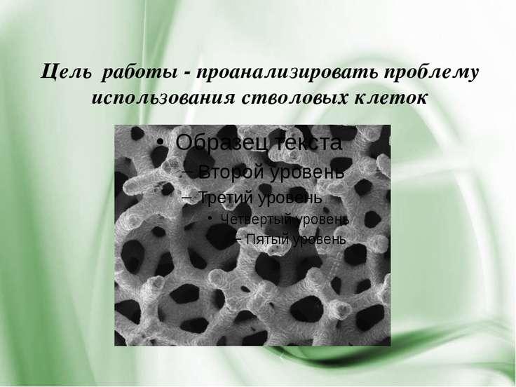 Цель работы - проанализировать проблему использования стволовых клеток