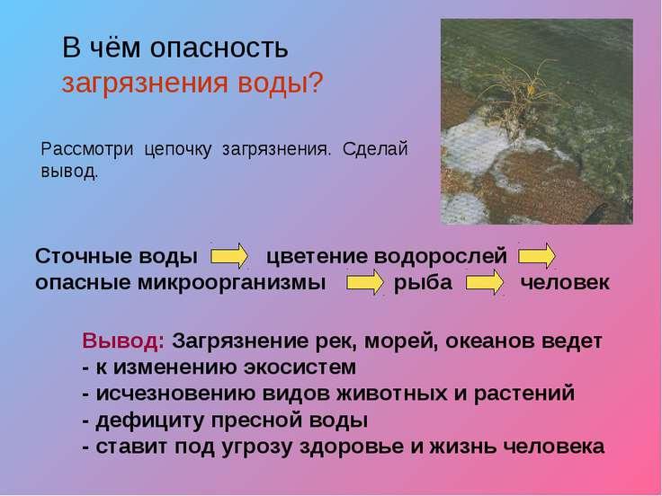 Вывод: Загрязнение рек, морей, океанов ведет - к изменению экосистем - исчезн...