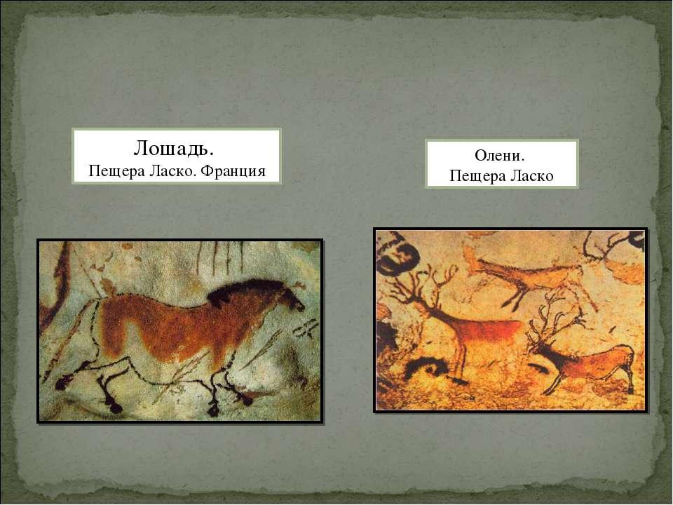 Олени. Пещера Ласко