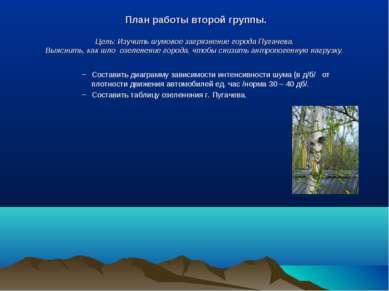 План работы второй группы. Цель: Изучить шумовое загрязнение города Пугачева....