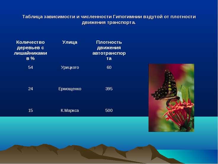 Таблица зависимости и численности Гипогимнии вздутой от плотности движения тр...