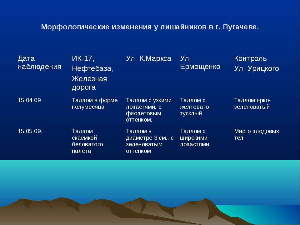 Морфологические изменения у лишайников в г. Пугачеве. Дата наблюдения ИК-17, ...