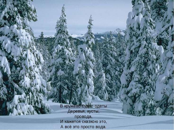 В кружево будто одеты Деревья, кусты, провода, И кажется сказкою это, А всё э...