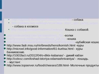 http://kapellan.ru/zelenye-rubezhi-rodiny.html - собака http://planeta.moy.su...