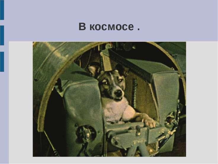 В космосе .