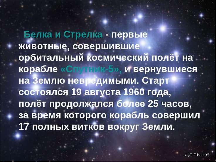 Белка и Стрелка - первые животные, совершившие орбитальный космический полёт ...
