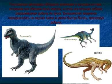 Плотоядные динозавры обладали длинными и острыми когтями, которыми они убивал...