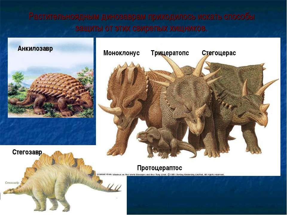 Растительноядным динозаврам приходилось искать способы защиты от этих свирепы...