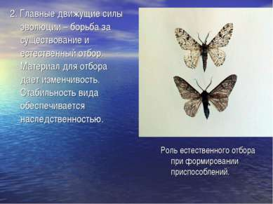 2. Главные движущие силы эволюции – борьба за существование и естественный от...