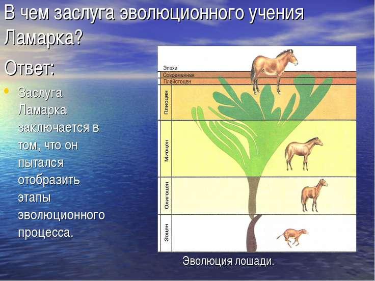 В чем заслуга эволюционного учения Ламарка? Ответ: Заслуга Ламарка заключаетс...