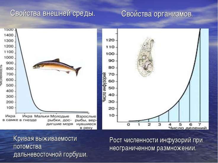 Рост численности инфузорий при неограниченном размножении. Кривая выживаемост...