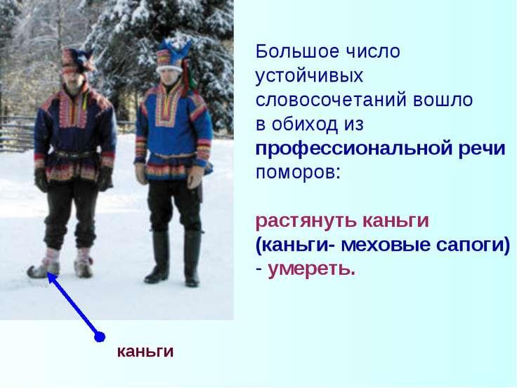 каньги Большое число устойчивых словосочетаний вошло в обиход из профессионал...