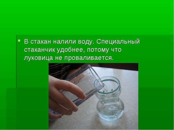 В стакан налили воду. Специальный стаканчик удобнее, потому что луковица не п...