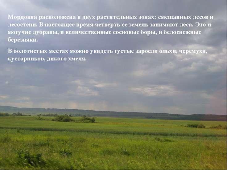 Мордовия расположена в двух растительных зонах: смешанных лесов и лесостепи. ...