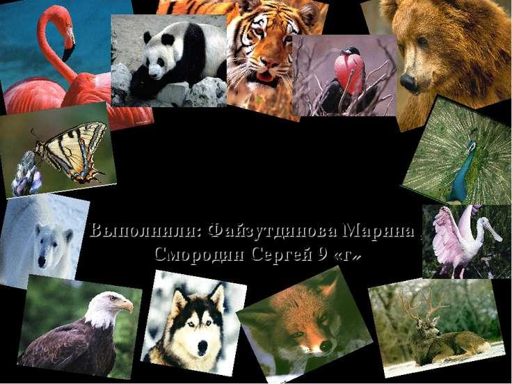 На грани вымирания Выполнили: Файзутдинова Марина , Смородин Сергей 9 «г»