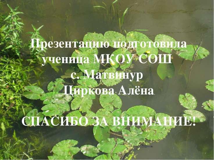 Презентацию подготовила ученица МКОУ СОШ с. Матвинур Циркова Алёна СПАСИБО ЗА...