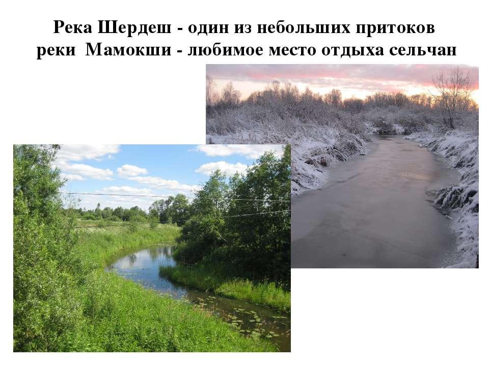 Река Шердеш - один из небольших притоков реки Мамокши - любимое место отдыха ...