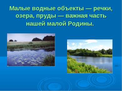 Малые водные объекты — речки, озера, пруды — важная часть нашей малой Родины.
