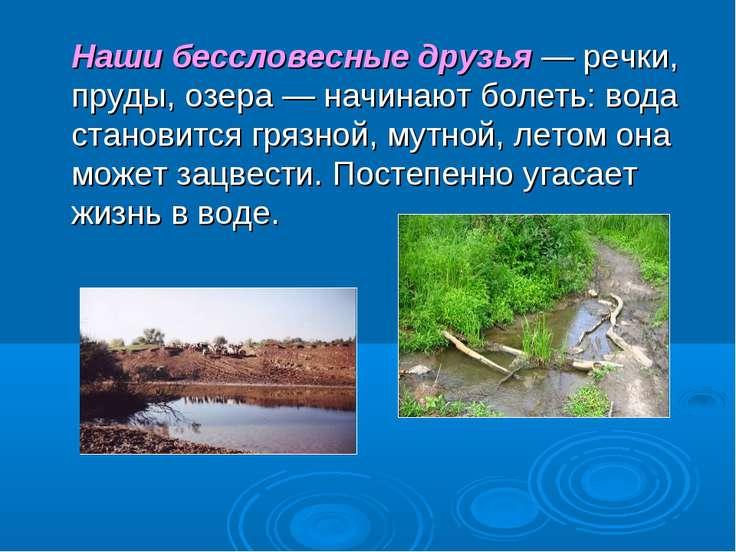 Наши бессловесные друзья — речки, пруды, озера — начинают болеть: вода станов...