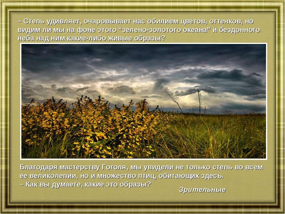 – Степь удивляет, очаровывает нас обилием цветов, оттенков, но видим ли мы на...
