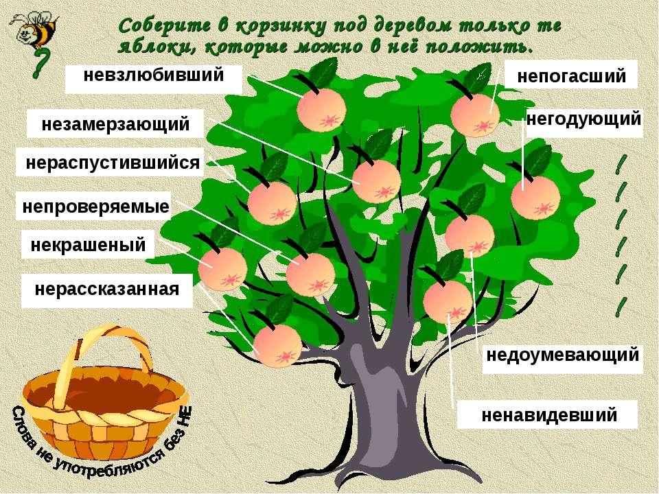 Соберите в корзинку под деревом только те яблоки, которые можно в неё положит...