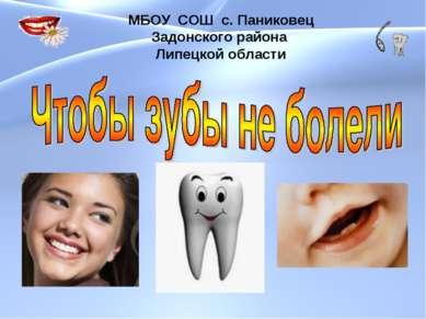 МБОУ СОШ с. Паниковец Задонского района Липецкой области