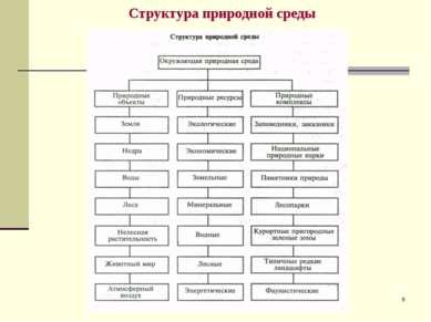 * Структура природной среды