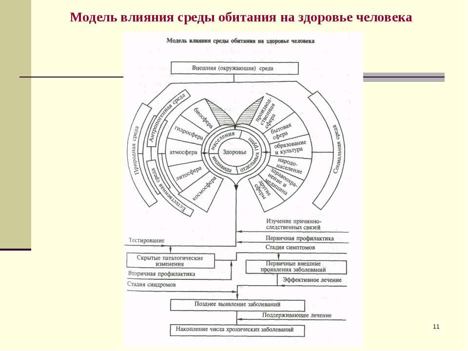 * Модель влияния среды обитания на здоровье человека