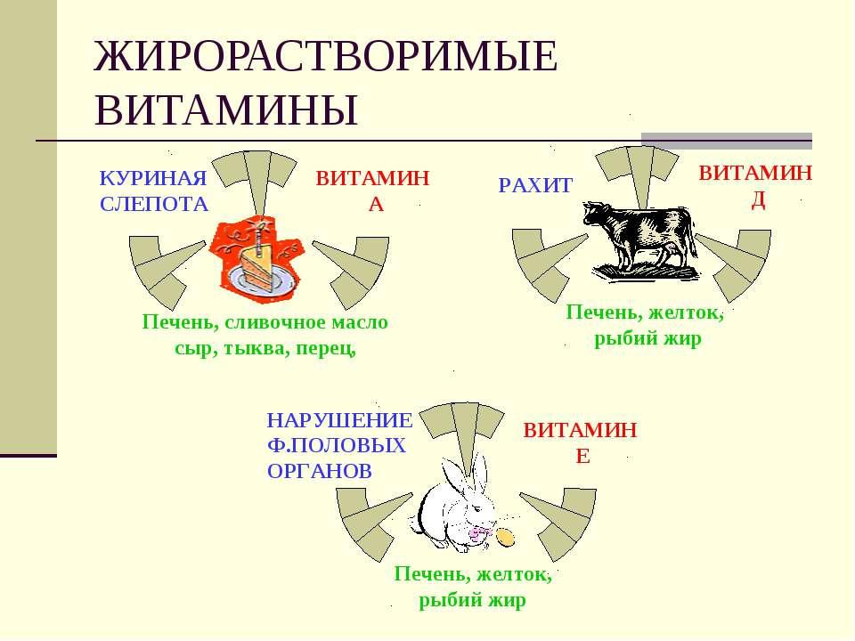 ЖИРОРАСТВОРИМЫЕ ВИТАМИНЫ НАРУШЕНИЕ Ф.ПОЛОВЫХ ОРГАНОВ