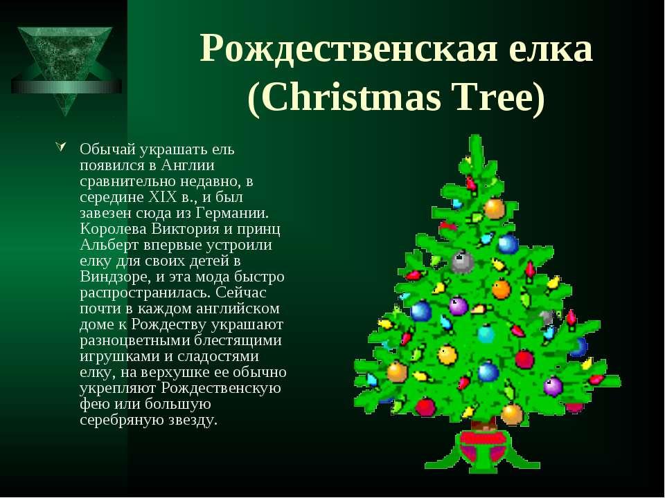 Рождественская елка (Christmas Tree) Обычай украшать ель появился в Англии ср...