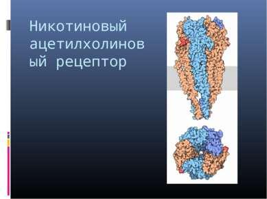Никотиновый ацетилхолиновый рецептор