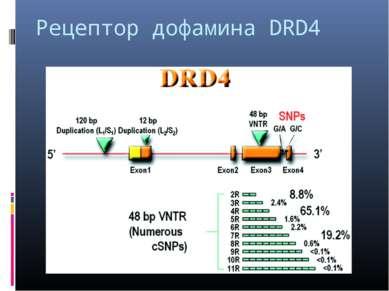 Рецептор дофамина DRD4