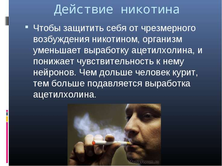 Действие никотина Чтобы защитить себя от чрезмерного возбуждения никотином, о...