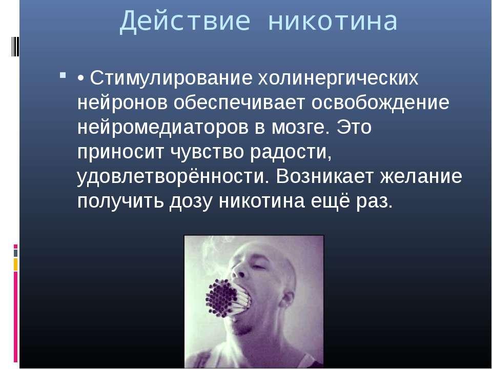 Действие никотина • Стимулирование холинергических нейронов обеспечивает осво...