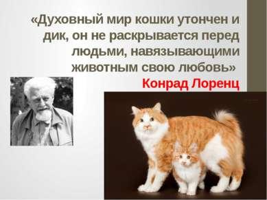 «Духовный мир кошки утончен и дик, он не раскрывается перед людьми, навязываю...