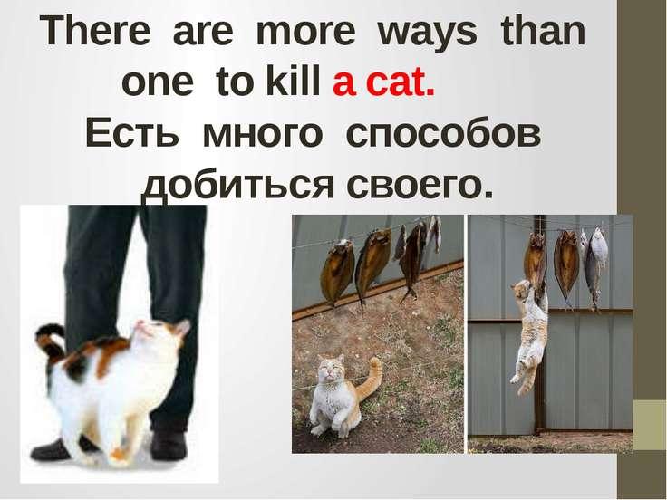 Тhere are more ways than one to kill a cat.  Есть много способов добить...