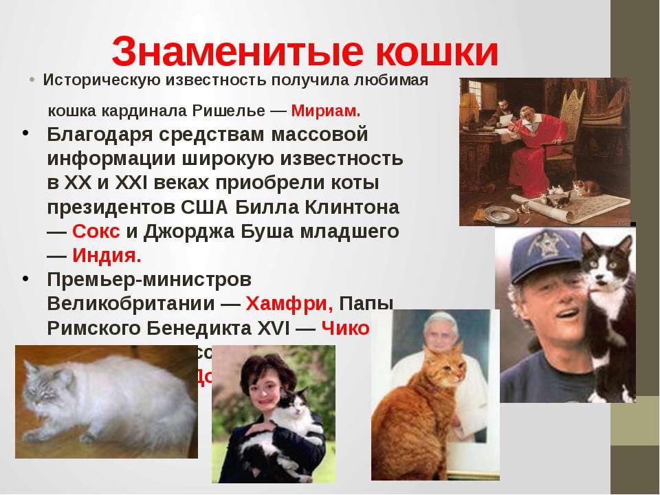 Знаменитые кошки Историческую известность получила любимая кошка кардинала Ри...