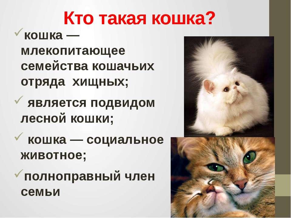 Кто такая кошка? кошка — млекопитающее семейства кошачьих отряда хищных; явля...