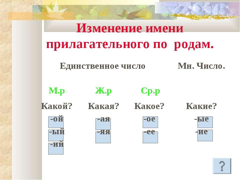 imena-prilagatelnie-zhenskogo-roda-imeyut-okonchaniya