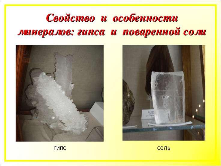 гипс соль Свойство и особенности минералов: гипса и поваренной соли