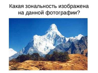 Какая зональность изображена на данной фотографии?