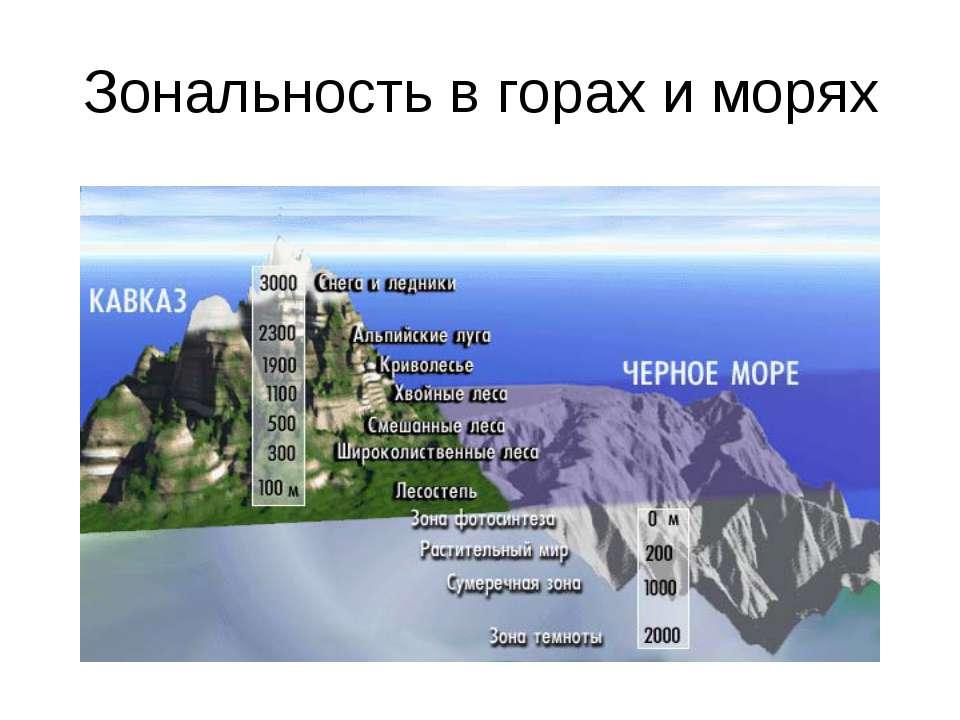 Зональность в горах и морях