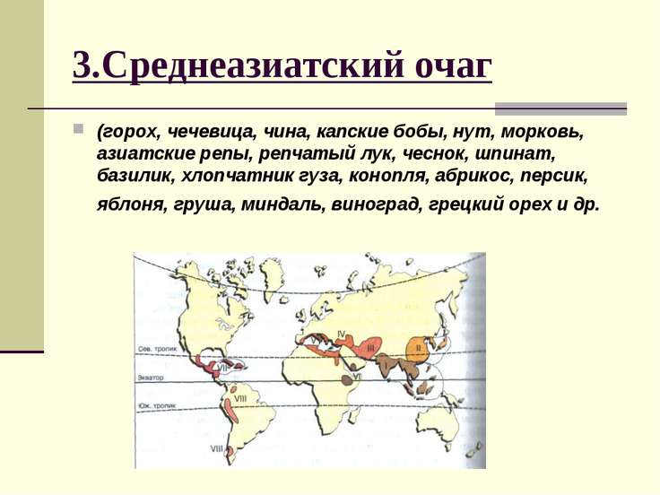 3.Среднеазиатский очаг (горох, чечевица, чина, капские бобы, нут, морковь, аз...